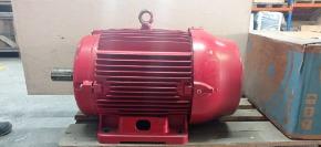 Motor Elétrico W22 Plus 4p 40cv 200l