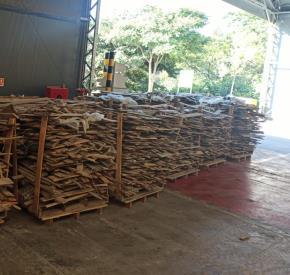 Sucata de Madeira Aprox. 35 Ton a gerar em 12 meses - Cajamar SP